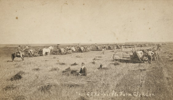 G. S. Barnes and Company farm, Glyndon