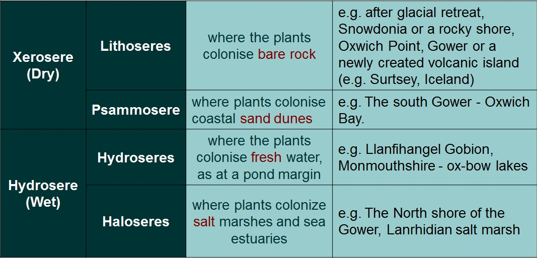 Ecosystems in the British Isles Alevel Geography Ecosystems – Primary and Secondary Succession Worksheet