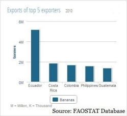 Graph showing top five exporters of bananas and the amount they exported;