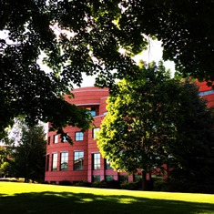 View of Foley Library through the trees.