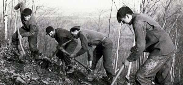 men working for the Civilian Conservation Corps