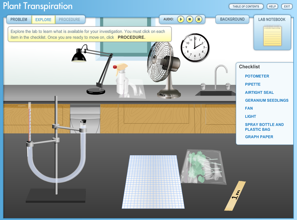 plant transpiration lab report