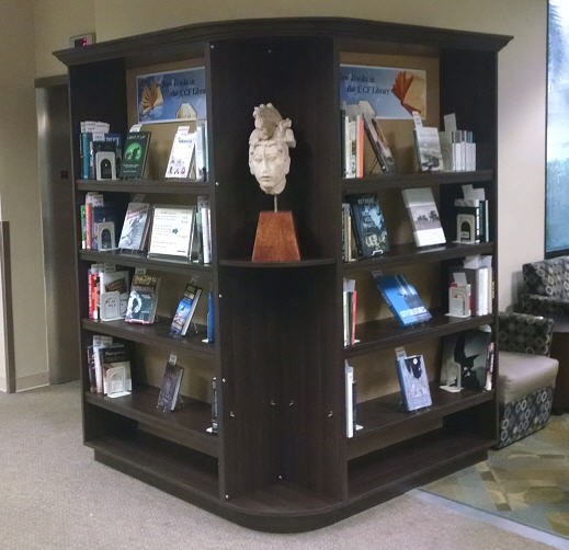 New Books Display in John C. Hitt Library