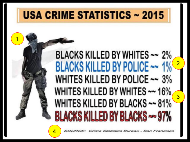 false u s a crime statistics