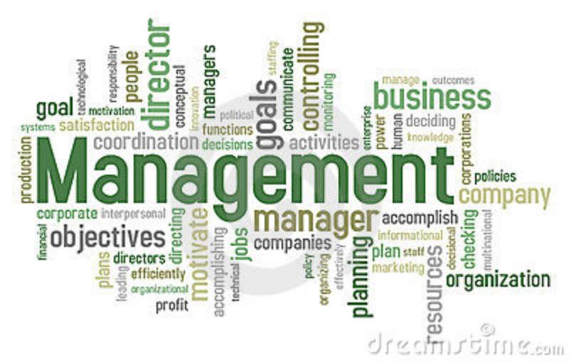 dissertation questions for business management