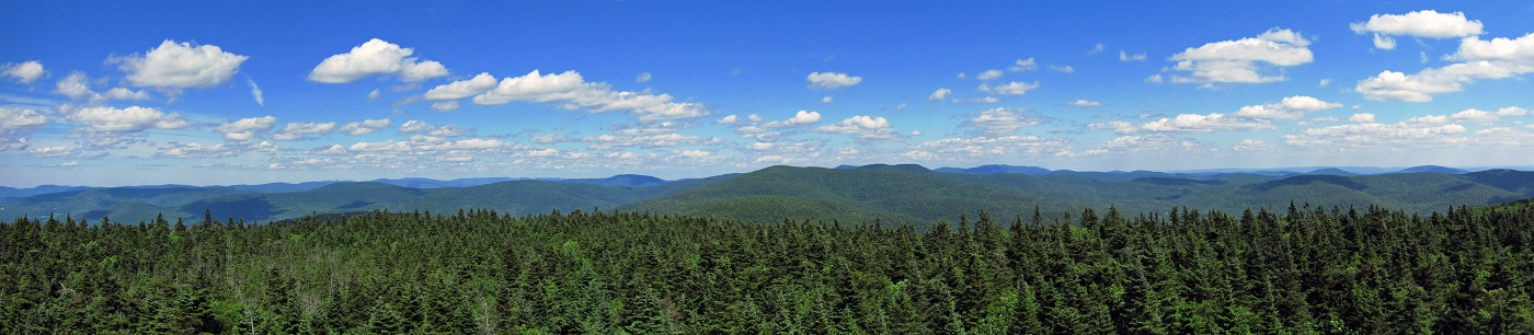 Balsam Lake Mountain fire tower panorama