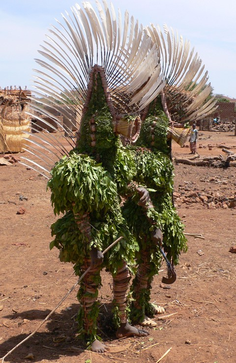 Masks of leaves and wood : the Bwa people of Burkina Faso - DVD