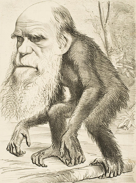 Caricature of Charles Darwin published in a satirical magazine in 1871.
