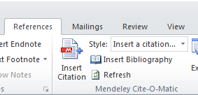 How mendeley plugin appears in Microsoft word image