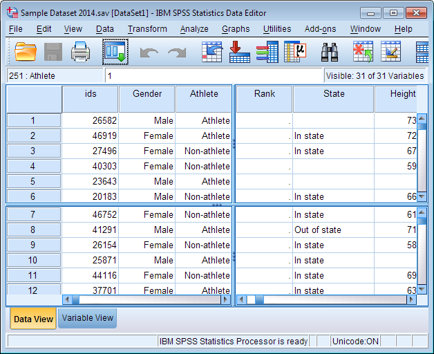 How should I input this data into SPSS?