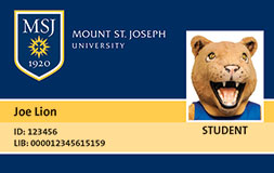 Example of MSJ AllCard.