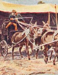 Buffalo Bill's Deadwood Stagecoach