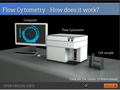 Video Screenshot [Image source: Oregon State University, Open Oregon State http://open.oregonstate.edu/modules/]