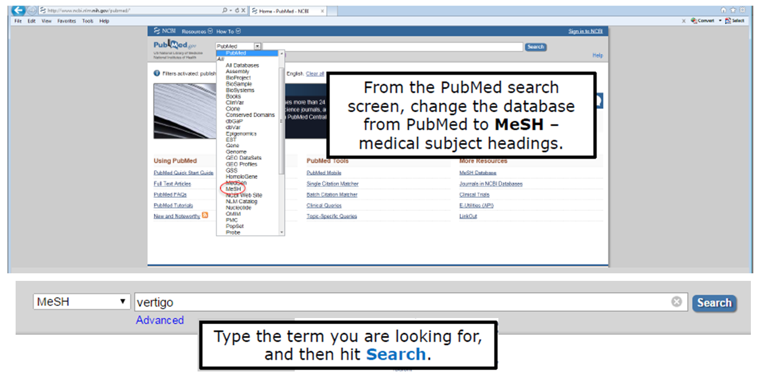 From the PubMed search screen, change the database from PubMed to MeSH - medical subject headings. Type the term you are looking for, and then hit search.