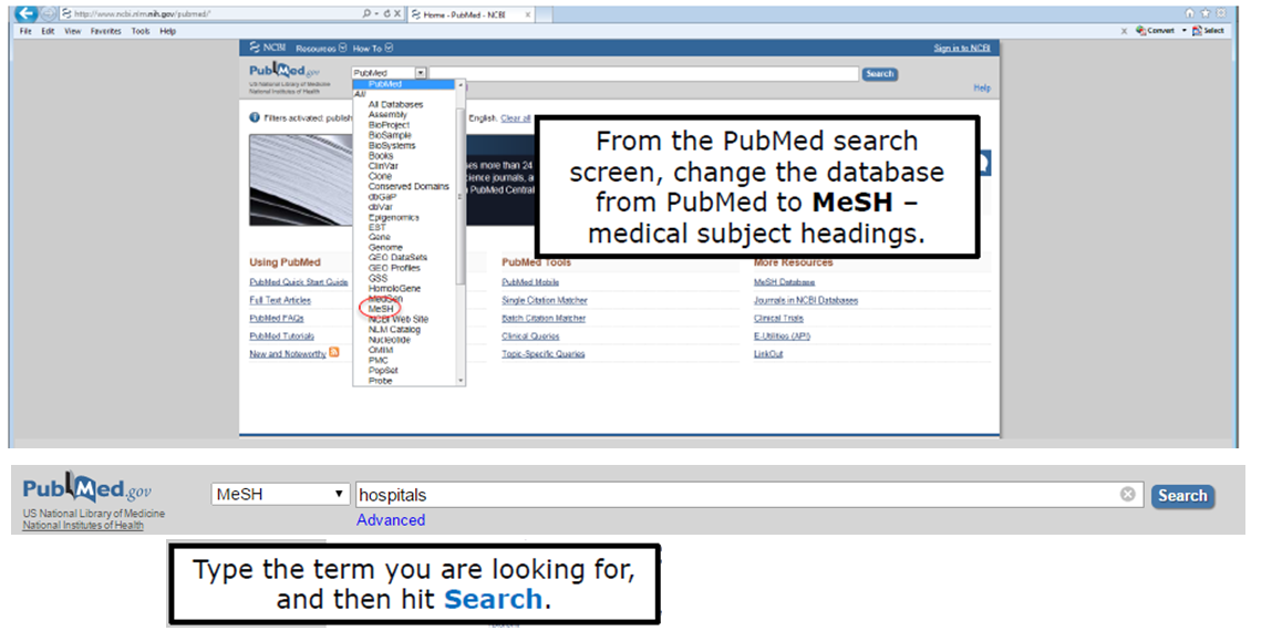 From the PubMed search screen, change the database from PubMed to MeSH – medical subject headings. Type the term you are looking for, and then hit Search.