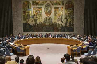Council Discusses Situation in Ukraine. A wide view of the Security Council meeting on the situation in Ukraine.