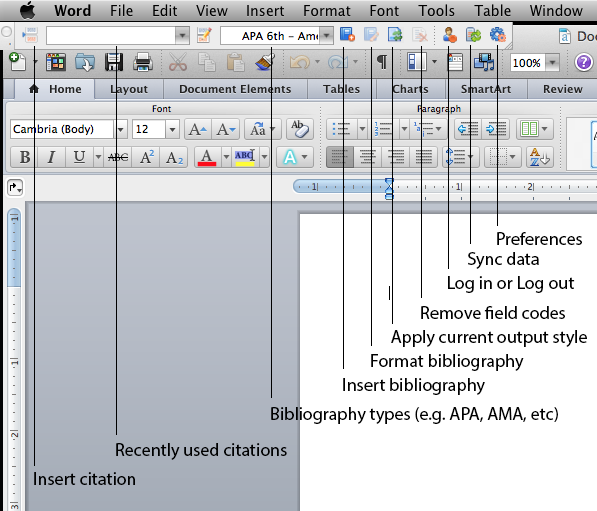 The Write-N-Cite toolbar in Microsoft Word on Mac