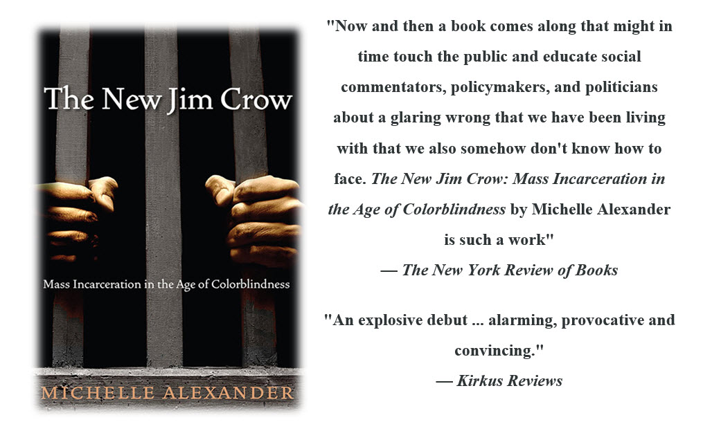The Rise and Fall of Jim Crow - Essay - ReviewEssayscom