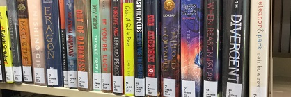 Young adult fiction shelf