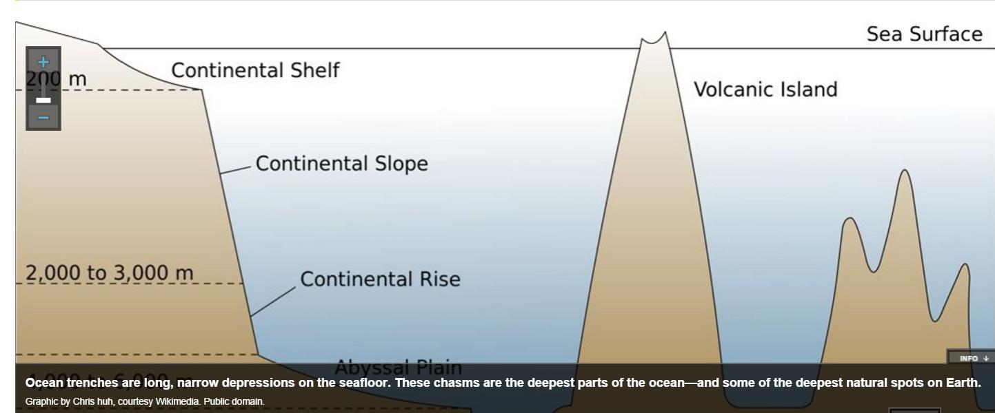 Deep Seas  Marine   Maritime1112    Oceanography    Habitats