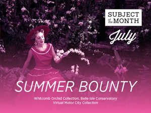 Summer Bounty Sign for Display