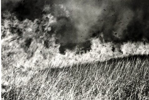 Black and white photo of prairie fire