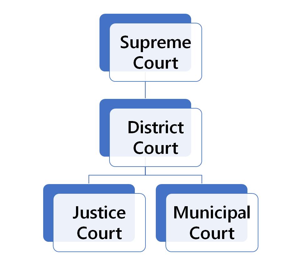 nevada court system diagram