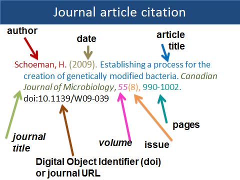 in text citation of journal article