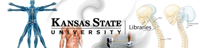 Kinesiology Banner . Link leads to larger view of same image.