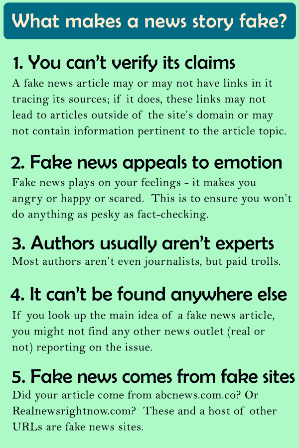 Infographic titled What Makes a News Story Fake?