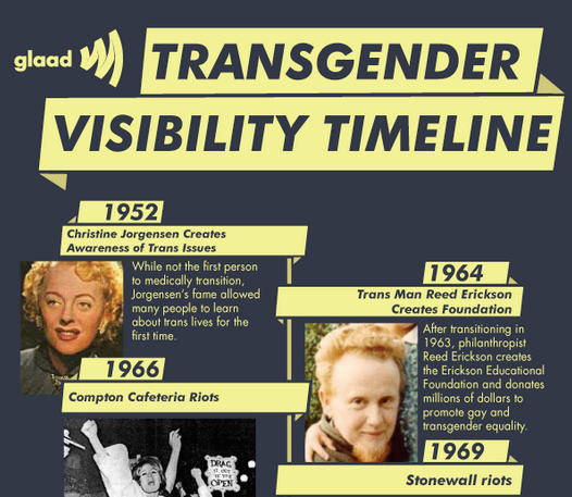 Gender Identity/Activism/Trans Issues