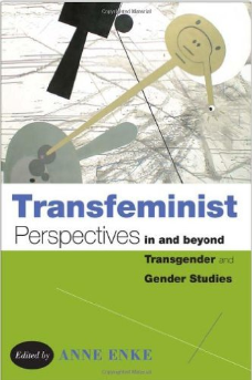 transfeminist perspectives