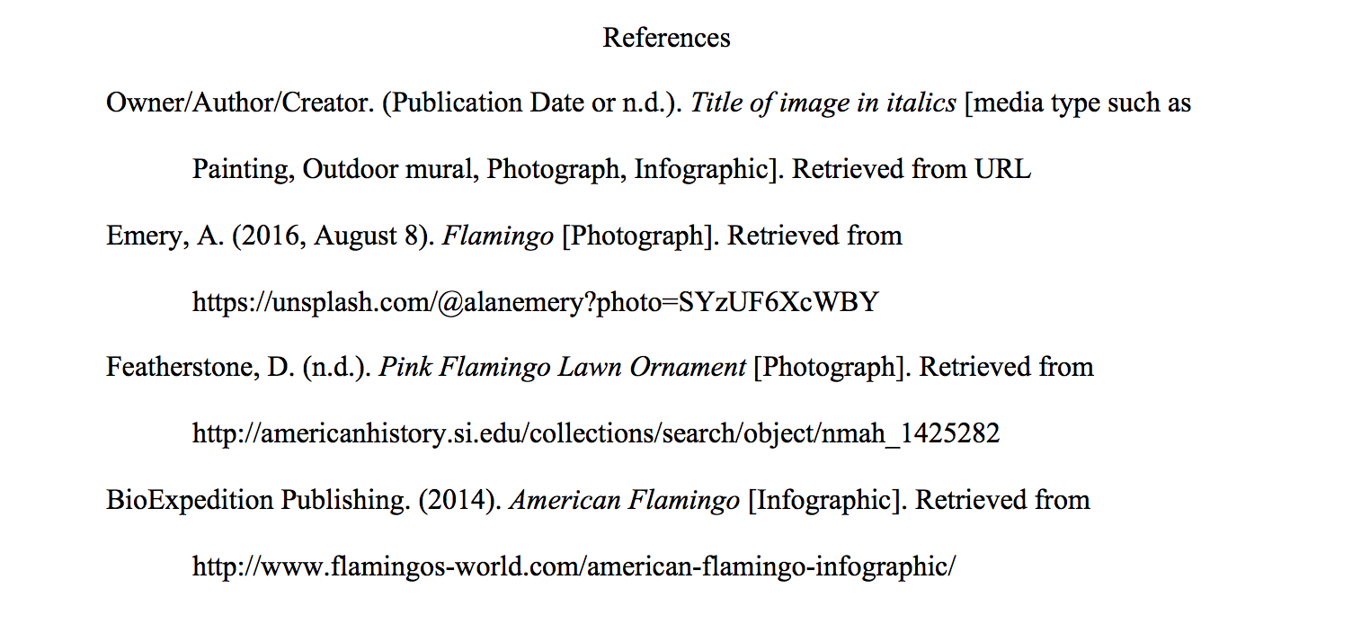 APA : Image Basic Website Image - APA: Citing Electronic Images ...
