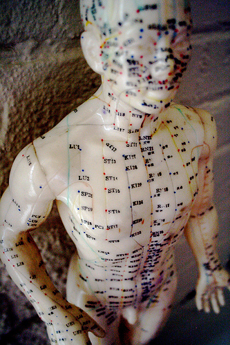 Acupuncture Model - CC BY-NC 2.0