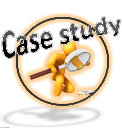 Guidelines For Case Analyses And Class Discussions - Case Study