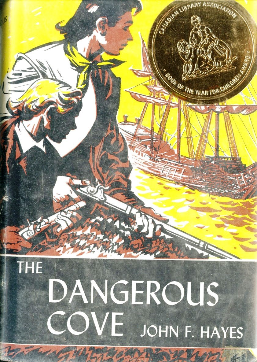 John F Hayes The Dangerous Cover book cover