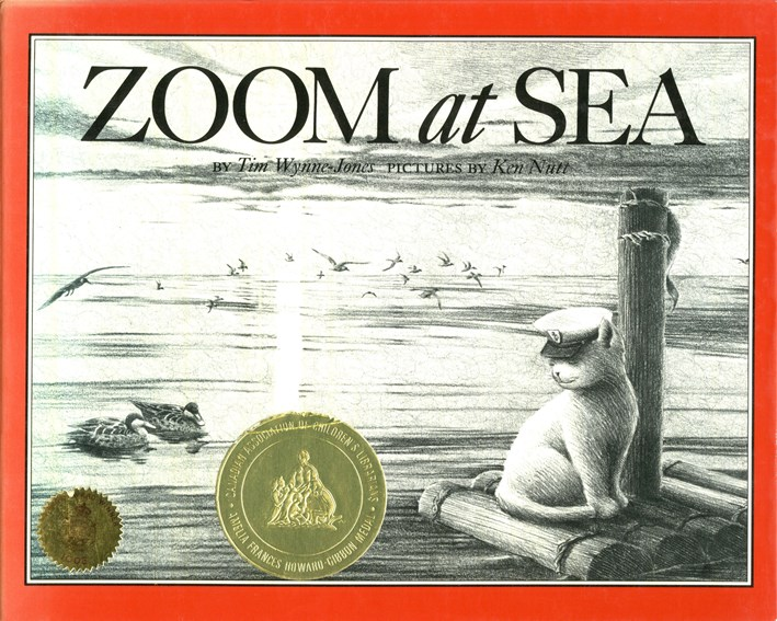 Zoom at Sea book cover