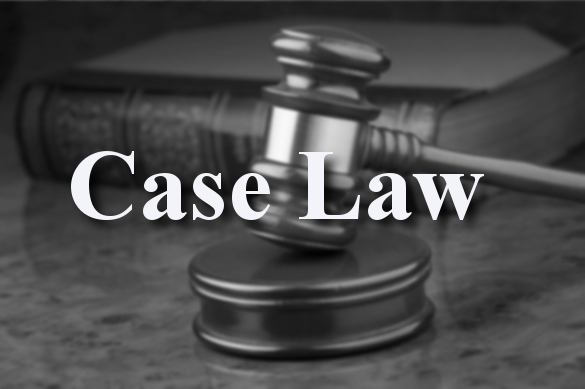 What are case laws?