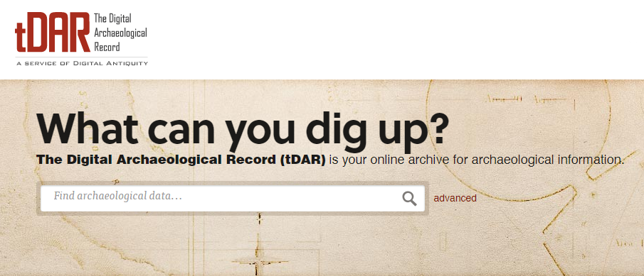 The Digital Archaeological Record