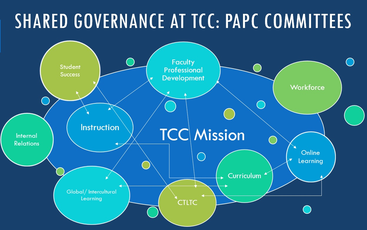 graphic of governance structure