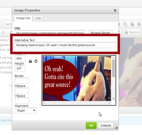 In LibGuides, enter alt text on the Image Properties window