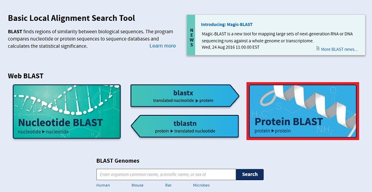 Blast compare identify sequences ncbi bioinformatics resources protein blast stopboris Image collections