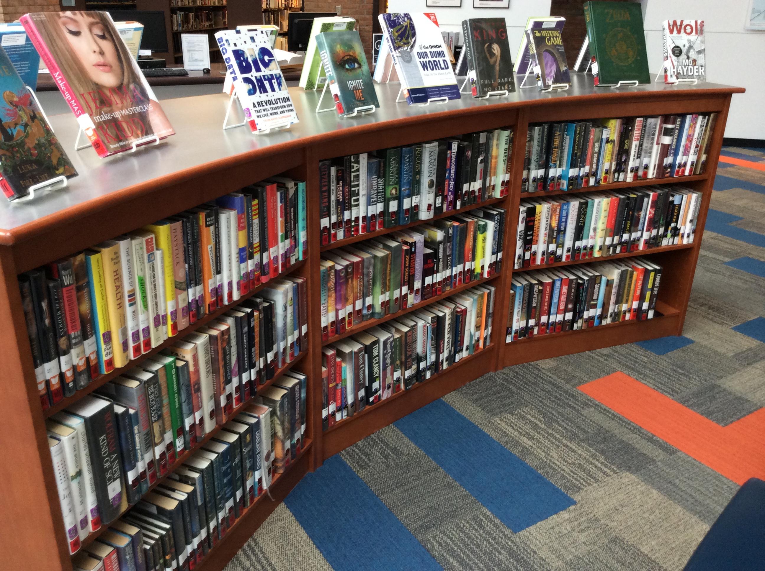 Recreational Reading Shelf
