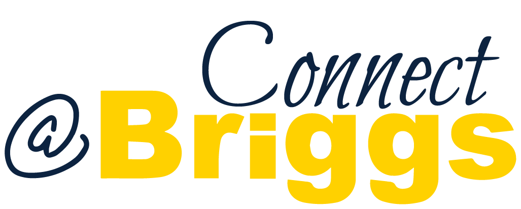 Connect @Briggs Logo