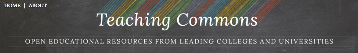Screenshot shows the Teaching Commons logo