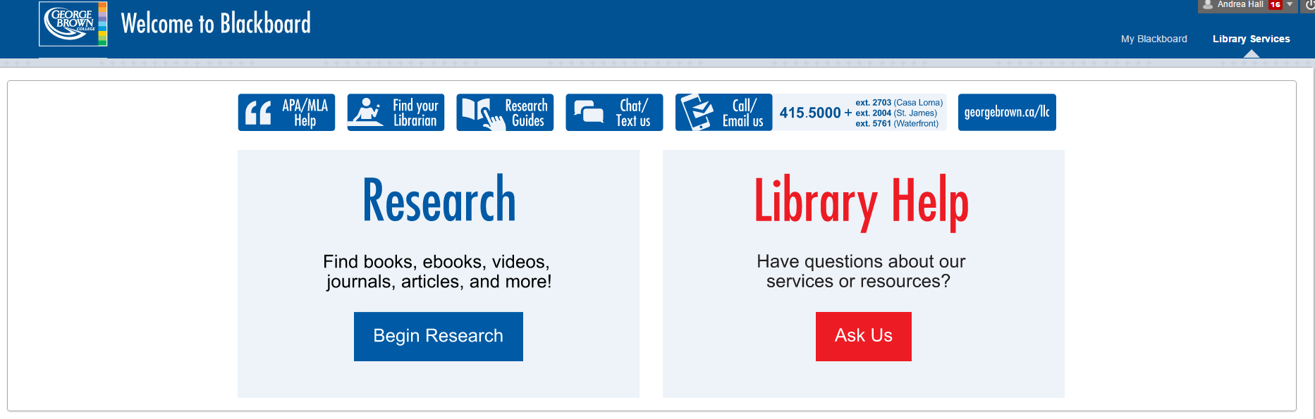 Screenshot of the Library Services page in Blackboard