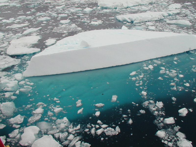 Iceburg pieces floating in water