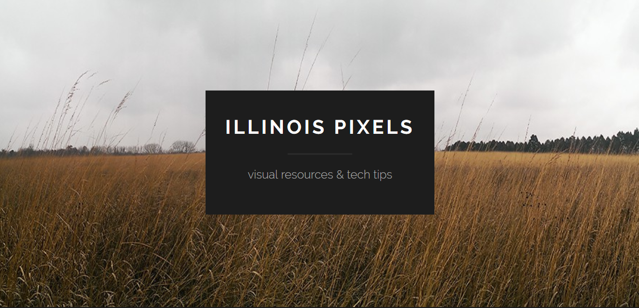 Link to Illinois Pixels