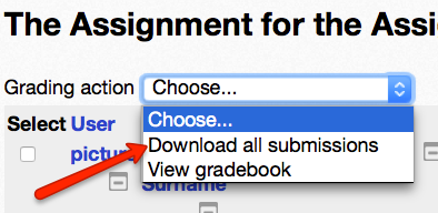 In the Grading Action drop down menu, select Download all submissions