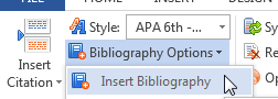 Insert Bibliography Option